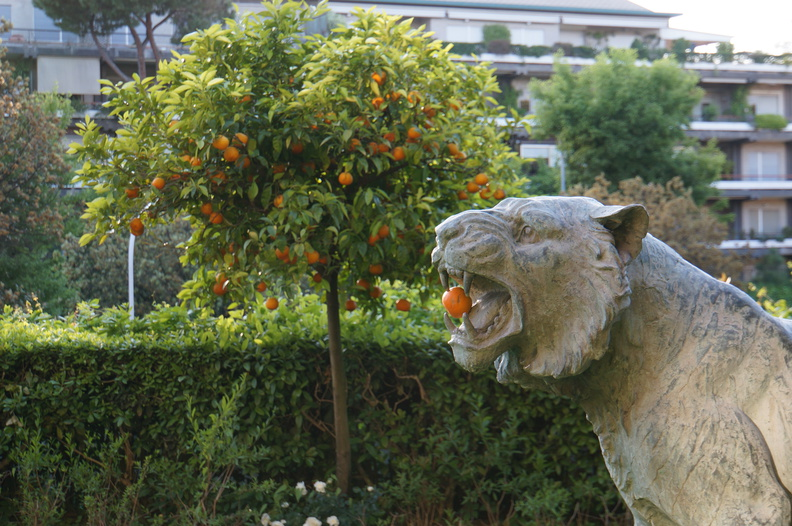 garden of the Rome Caveleri hotel