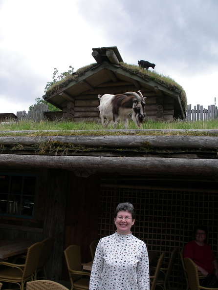 Goats (on roof), not Joanna!